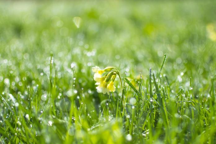 Kalo Pas Hujan Itu Enaknya Ngapain Aja Sih?