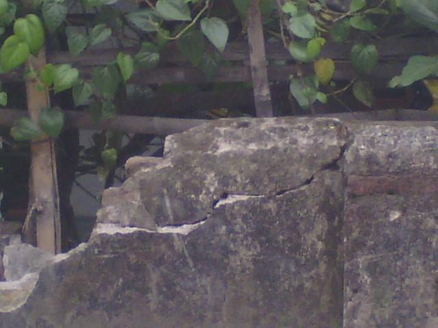 Retakan dinding pagar depan rumah adikku