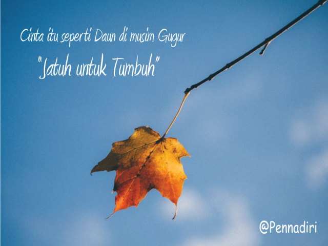 Cinta itu seperti dedaunan di musim gugur, Jatuh untuk tumbuh
