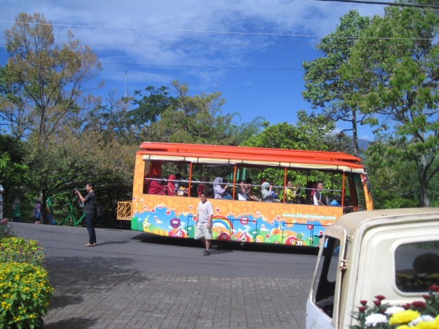 Bus Mini untuk tour keliling kebun di agrowisata bhakti alam