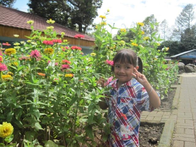 taman bunga bhakti alam pasuruan